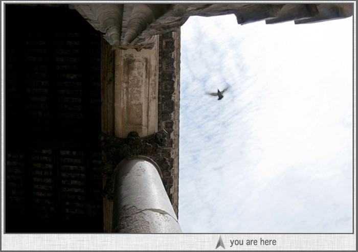 6 eighteen studios front page image: bird flying over Pantheon